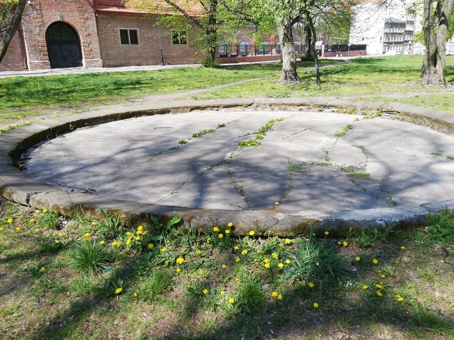 Gdańsk. Plac Wałowy. Zdjęcia współczesne. Kamienna podstawa fontanny, która znajdowała się na Placu Wałowym. Podstawa jest okrągła, a kamień ma kolor szary. Płyta jest popękana. Dookoła niej porasta trawa i drzewa. W tle usytuowany jest ceglany budynek.