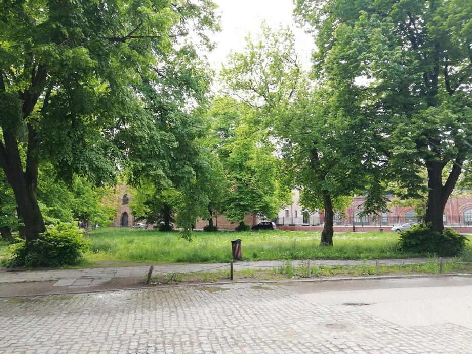 Gdańsk. Plac Wałowy. Zdjęcia współczesne. Plac Wałowy jest miejscem pełnym zieleni i starych drzew. Na zdjęciu widnieje zabytkowa brukowana szara droga. W dalszym planie jest plac zieleni (bujne drzewa liściaste). W tle znajdują się ceglane budynki.