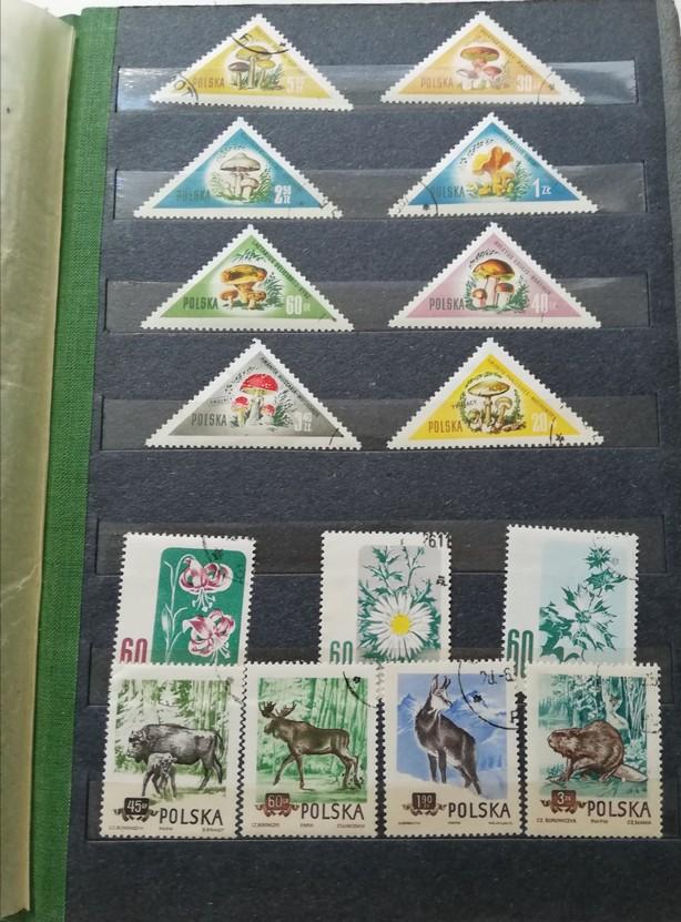 Na zdjęciu widnieje strona z klasera na znaczki oraz kolekcja znaczków pocztowych. Na górze znajdują się znaczki trójkątne, a na dole prostokątne. Trójkątne prezentują różne gatunki grzybów, a prostokątne różne gatunki kwiatów oraz dzikich zwierząt.